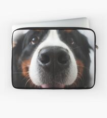 Bernese Mountain Dog Laptop Sleeve