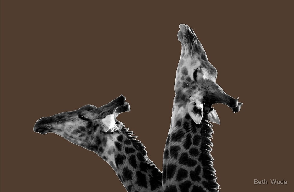Neck & Neck - Thornhill NP  South Africa by Beth  Wode