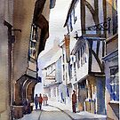 22-11-2009 York Shambles by BuaS