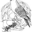 Falconry by Vicky Pratt