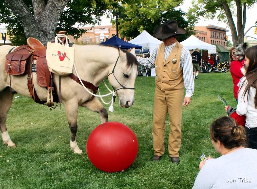 Sundance the Horse  by Jan  Tribe