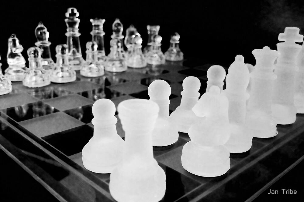 Chess Anyone? by Jan  Tribe