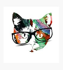Hipster calico kitty cat Photographic Print