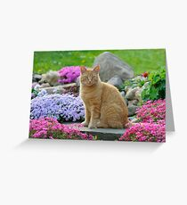 Ginger Garden Cat Greeting Card