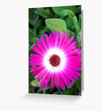 Fractal flower Greeting Card