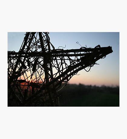 A new dawn Photographic Print