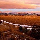 Rocky Mountains At Sunrise by Pamela Hubbard