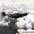 P51 1944 Air to Air by JMaxFly
