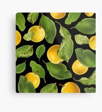 Botanical Vintage Fruit Metal Print