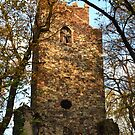 Old Tower in the sunset by Lenka Vorackova