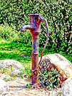 Water Pump Falmer by Dorothy Berry-Lound