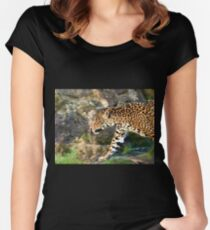 Predator Women's Fitted Scoop T-Shirt