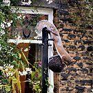 Iconic daring Red Squirrel by patjila