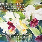 White Orchids- John 14:27 by Janis Lee Colon