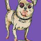 Zombie Chihuahua by Extreme-Fantasy