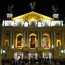 Lvov Opera House at night by Elena Skvortsova