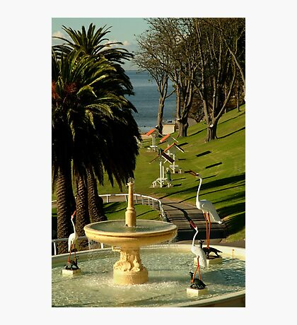 Fountain,Eastern Beach Photographic Print