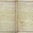 Ursprüngliche 14. Änderung der Verfassung der Vereinigten Staaten von allhistory