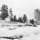 Yellowstone National Park Landscape by robcaddy