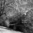 Flussufer von Mark Bangert