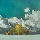 Winterhimmel von Mark Bangert