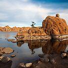 At Watson Lake by Alla Gill