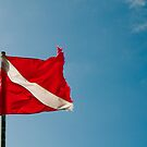 Diver Flag by muzy