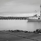Crowdy Head Marina 0613 by kevin Chippindall