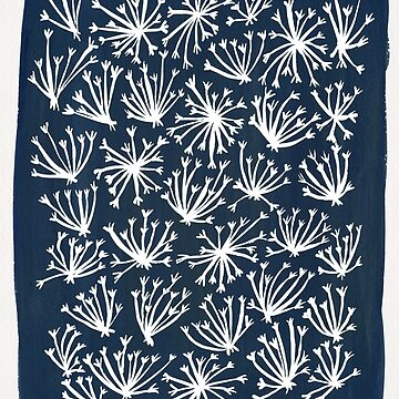 Queen Anne's Lace – White on Navy by catcoq