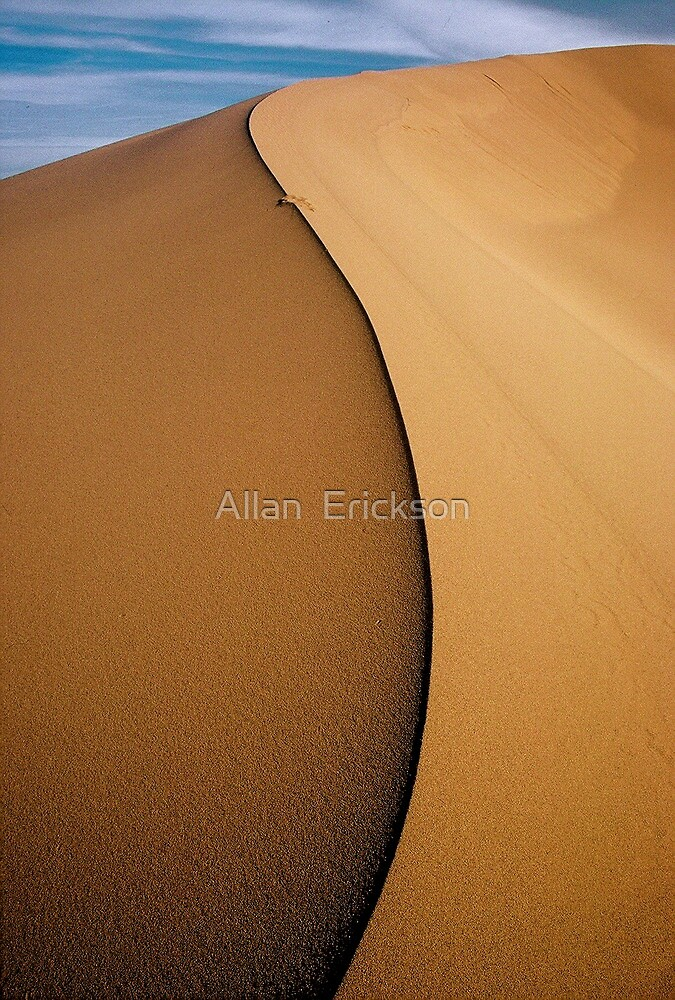 sand and light... by Allan  Erickson