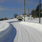 Rural road in winter by christopher363