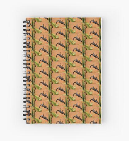 African Striped Skink (Trachylepsis striata) Spiral Notebook