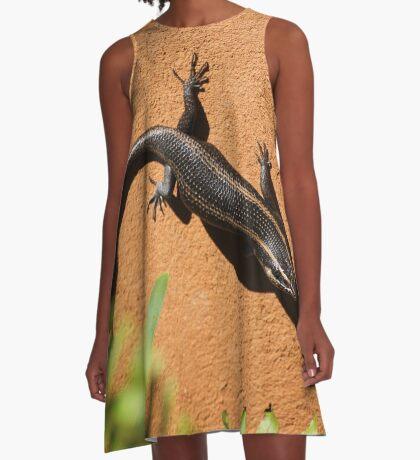 African Striped Skink (Trachylepsis striata) A-Line Dress