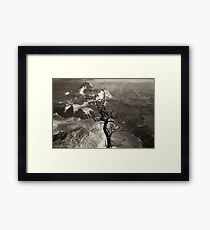 Tree: A Portrait Framed Print