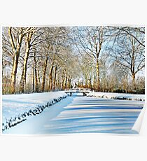 WINTER VIEW AT THE JULIANA PARK Poster