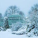 Tropisches Haus im Schnee von Paul Barnett