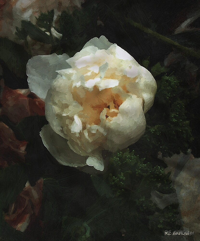 Remembrance in White by RC deWinter