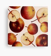Vintage Apples Print Metal Print