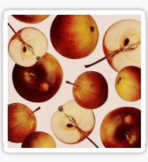 Vintage Apples Print Sticker