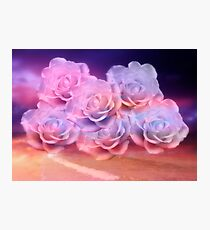 Soft Roses And Sea Art Work Photographic Print