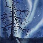 Aurora Borealis by Sandra Connelly