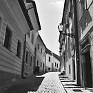 Narrow street with cobblestone road by Lenka Vorackova