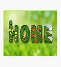 HOME / HOME / Decoration Photographic Print