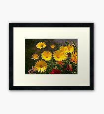 June Garden 3 Framed Print