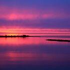 Purple Sky by Jo Nijenhuis