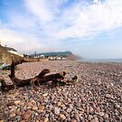 Sidmouth Beach by Leon Woods