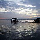 Night Time Across The Lake by Cynthia48