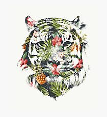 Tropical Tiger Photographic Print