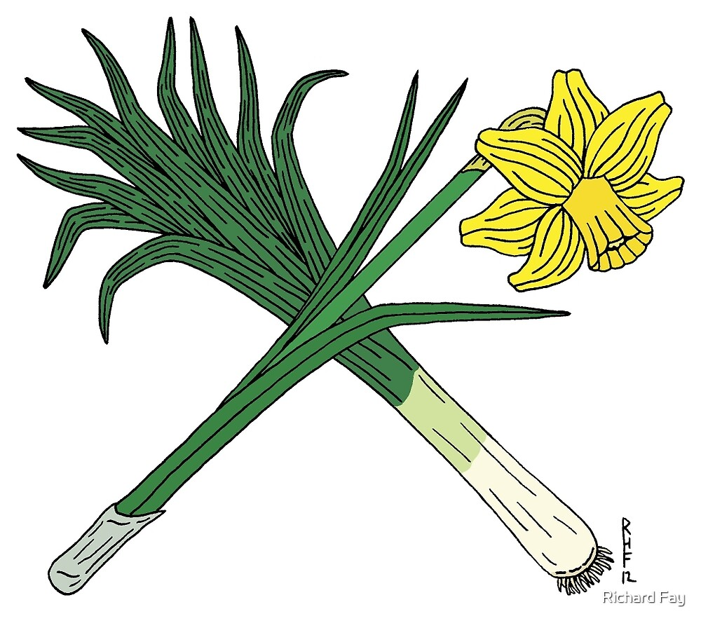 """Leek and Daffodil Crossed"" by Richard Fay 