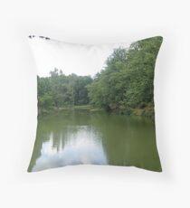 Green mirror... Throw Pillow